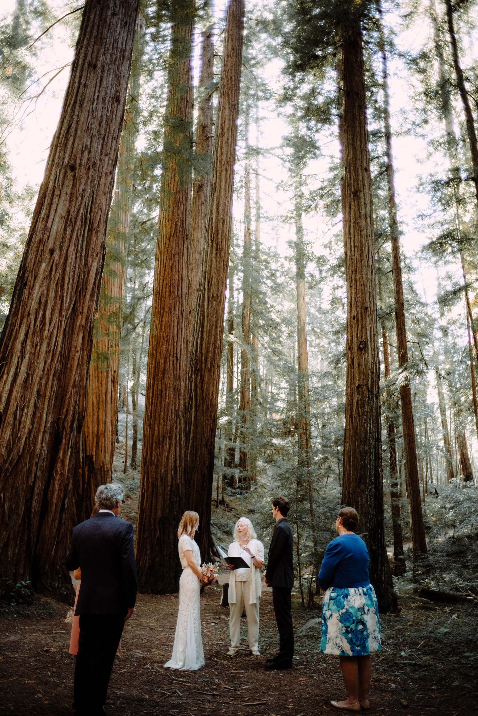 redwood-forest-elopement-0014