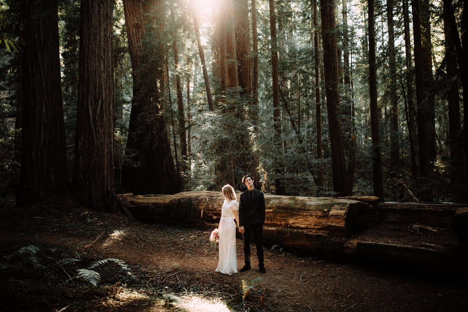 redwood-forest-elopement-0031