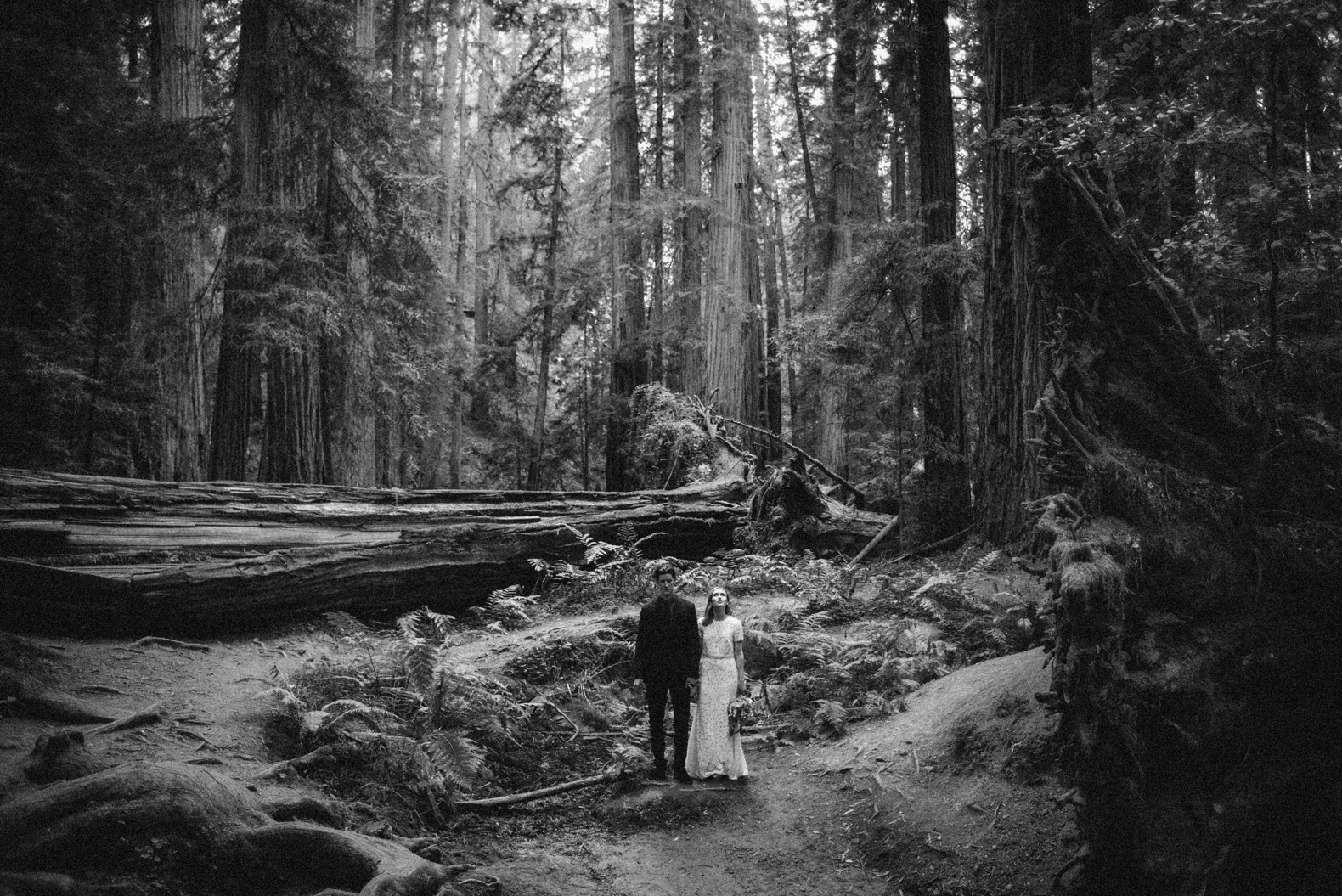 redwood-forest-elopement-0039
