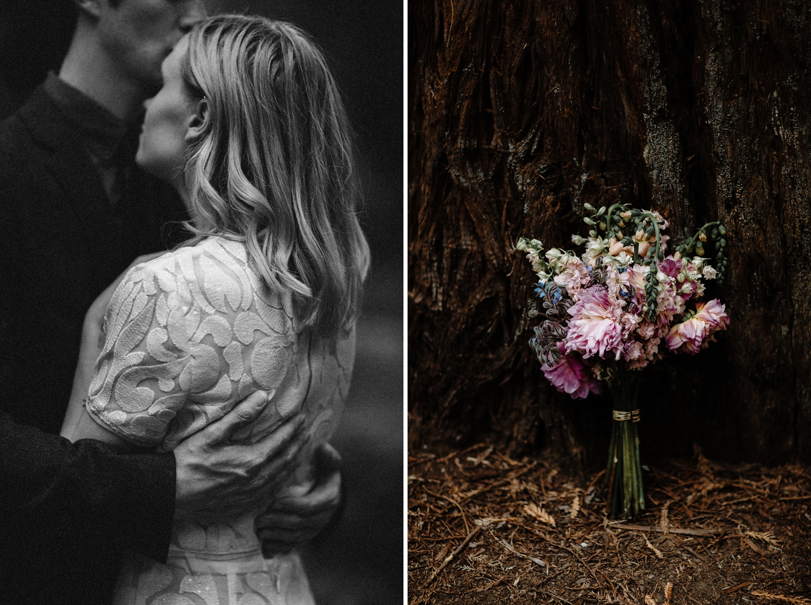 redwood-forest-elopement-0041